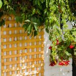 A fine mesh square style, heavy duty trellis that is great as a fence top, privacy screen or supporting climbing plants. The Badminton Trellis is manufactured from fine sawn timber that provides a smooth and exceptional finish and is available pressure-treated golden brown for longevity in use.