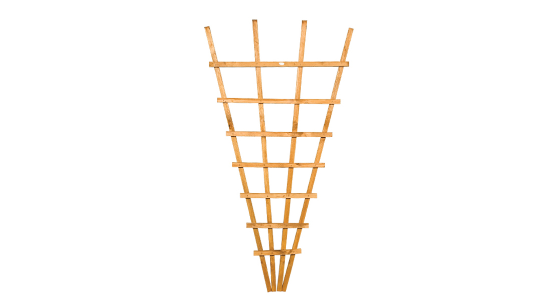 This fan shape trellis allows plants to be supported in a more interesting and natural shape with a new and improved, fine sawn timber finish. This trellis is pressure-treated golden brown for protection against wood rot
