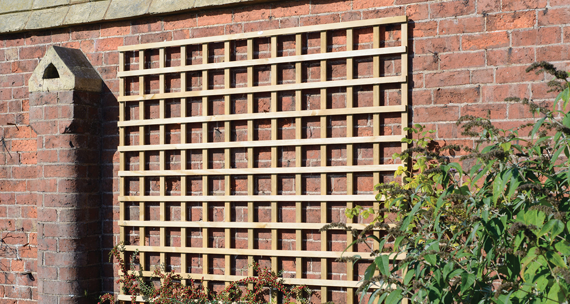 This Heavy Duty Trellis with a robust frame is ideal for supporting climbing plants. The fine swan timber provides a smooth, superior finish whilst the pressure treatment protects the trellis from wood rot and decay.