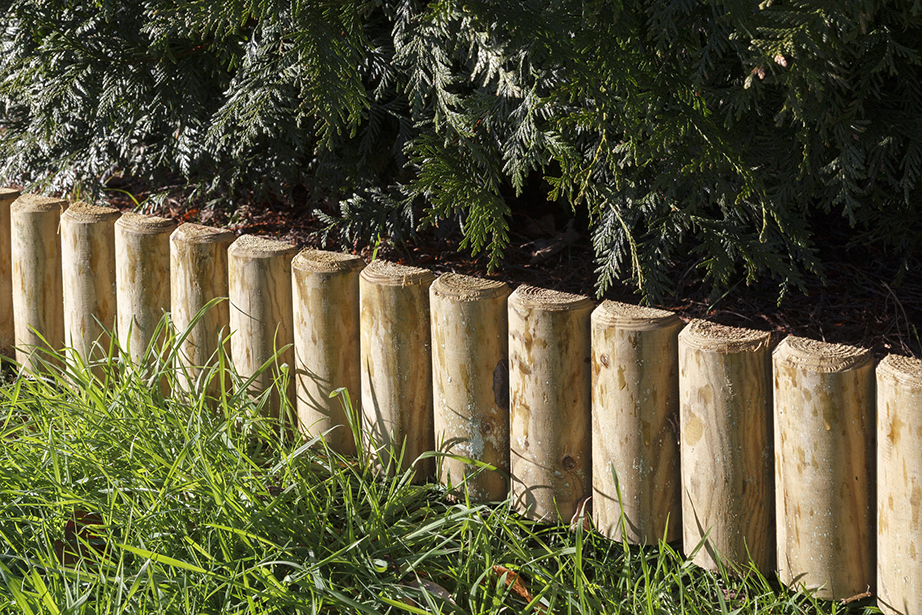 The green log edging board makes it easy to create decorative borders in your back garden; perfect for enhancing special features such a flower beds or paths. Its natural timber is attractive and excellent for providing a polished look for your outdoor space. Pressure treated for protection against wood rot.