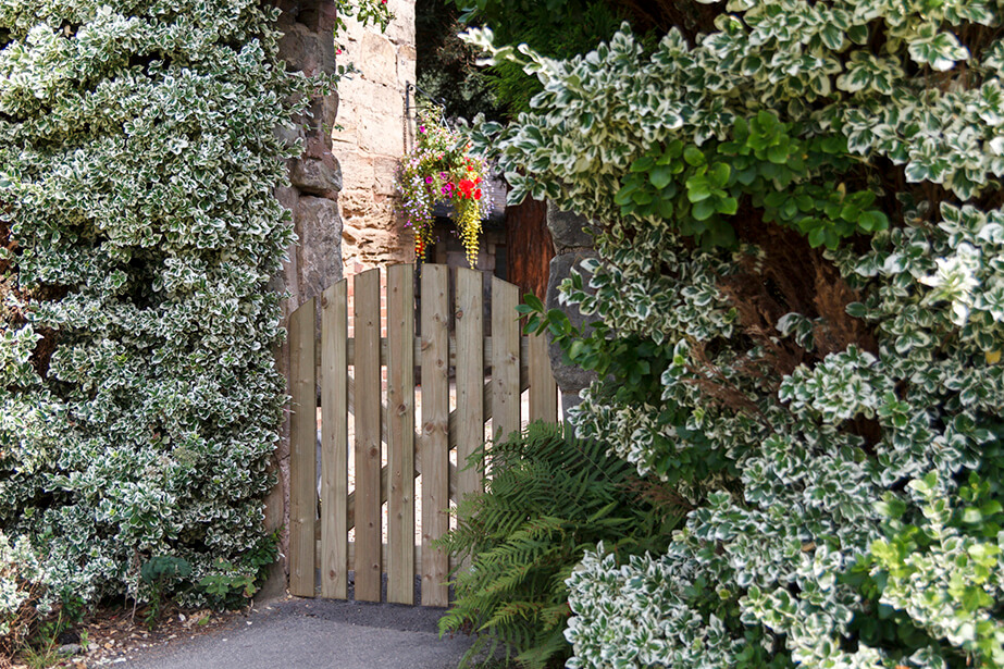 A domed top gate with a simplistic yet rustic feel, ideal to use along a pathway or entrance. The planed timber is pressure-treated to ensure longevity in use.
